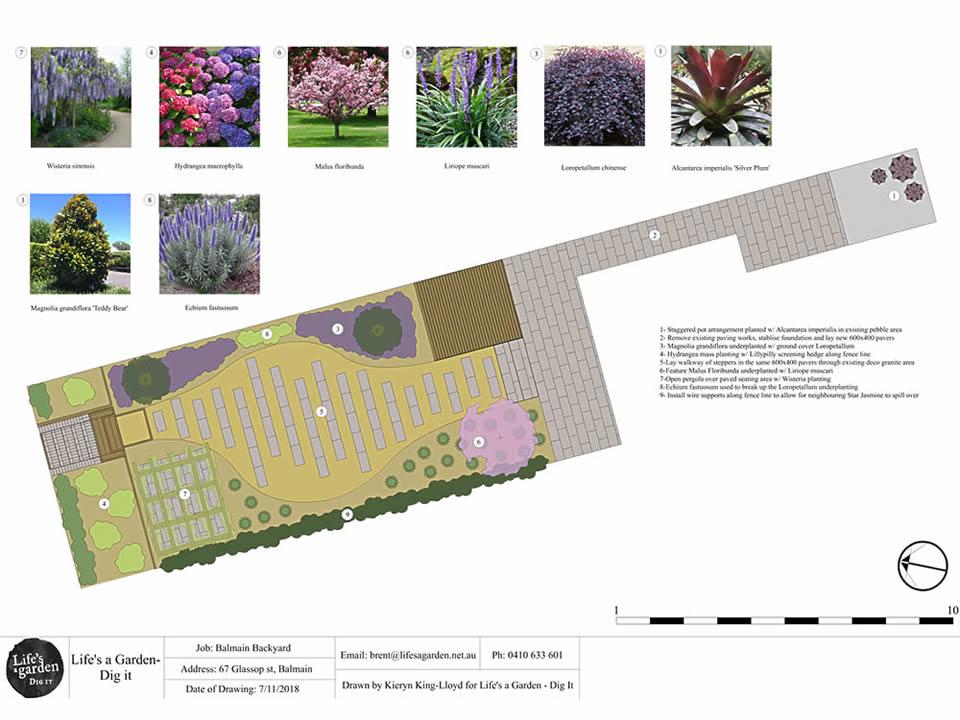 Balmain-Landscape-Design