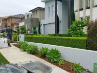 Kellyville<br>Hedging and lawn care