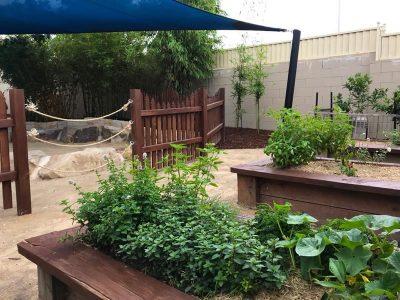 Kinda Mindi Childcare Centres – complete property maintenance services - Landscape Maintenance 1