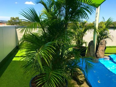 Kindalin Childcare Centres – complete property maintenance services - Landscape Maintenance 3