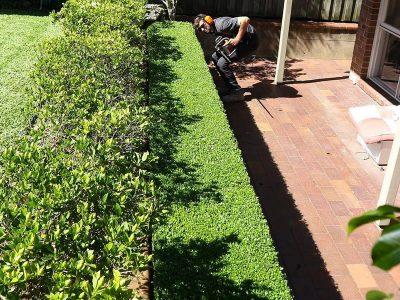 Landscape Maintenance Mosman 3